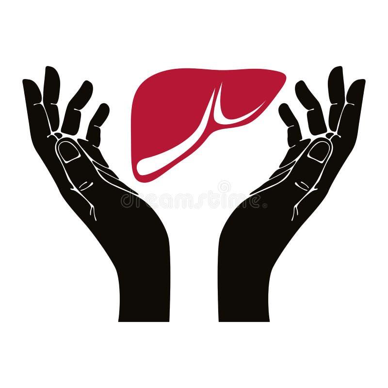 Χέρια με το ανθρώπινο διανυσματικό σύμβολο συκωτιού ελεύθερη απεικόνιση δικαιώματος