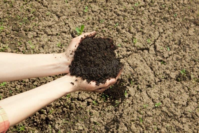 Χέρια με το χώμα στοκ φωτογραφίες με δικαίωμα ελεύθερης χρήσης
