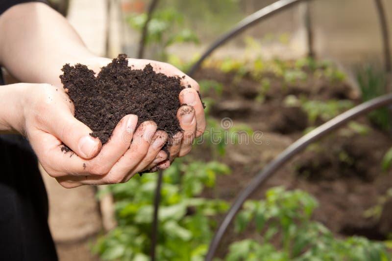 Χέρια με το χώμα στοκ φωτογραφία