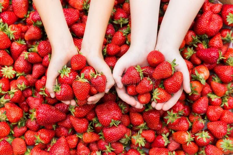 Χέρια παιδιών με τις φράουλες στοκ φωτογραφίες με δικαίωμα ελεύθερης χρήσης