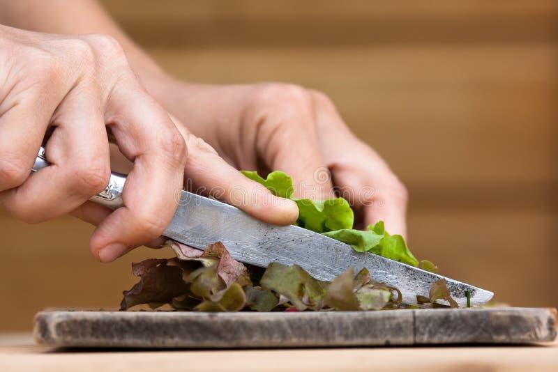 Χέρια που κόβουν το πράσινο μαρούλι στον ξύλινο τέμνοντα πίνακα στοκ εικόνες