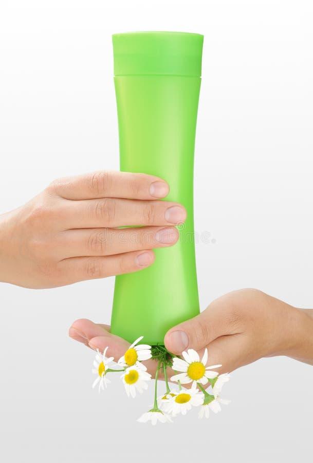 Χέρια του νέου μπουκαλιού καλλυντικών εκμετάλλευσης γυναικών και φρέσκου chamomile στοκ εικόνες