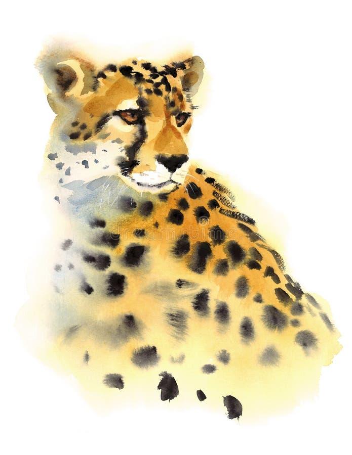 Χέρι απεικόνισης άγριων ζώων Watercolor τσιτάχ που χρωματίζεται ελεύθερη απεικόνιση δικαιώματος