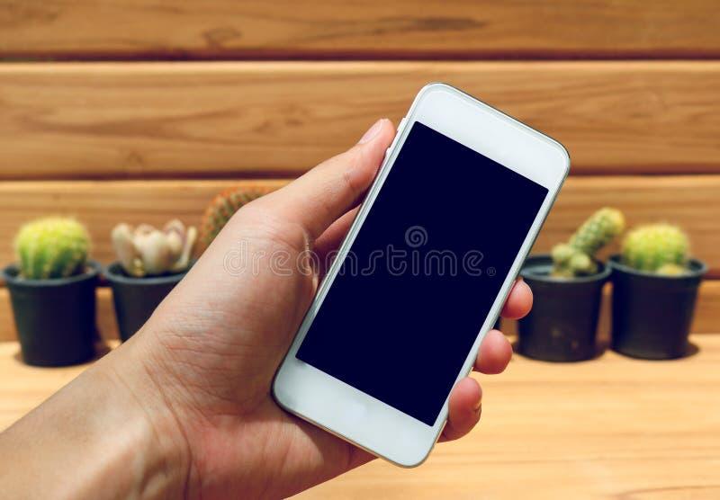 Χέρι ατόμων που κρατά την κινητή τηλεφωνική κενή οθόνη με τον κάκτο και το ξύλο στοκ φωτογραφία