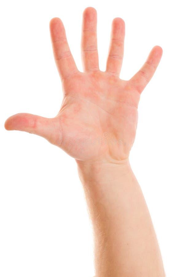 Χέρι ατόμων ` s που παρουσιάζει πέντε δάχτυλα στοκ φωτογραφία με δικαίωμα ελεύθερης χρήσης