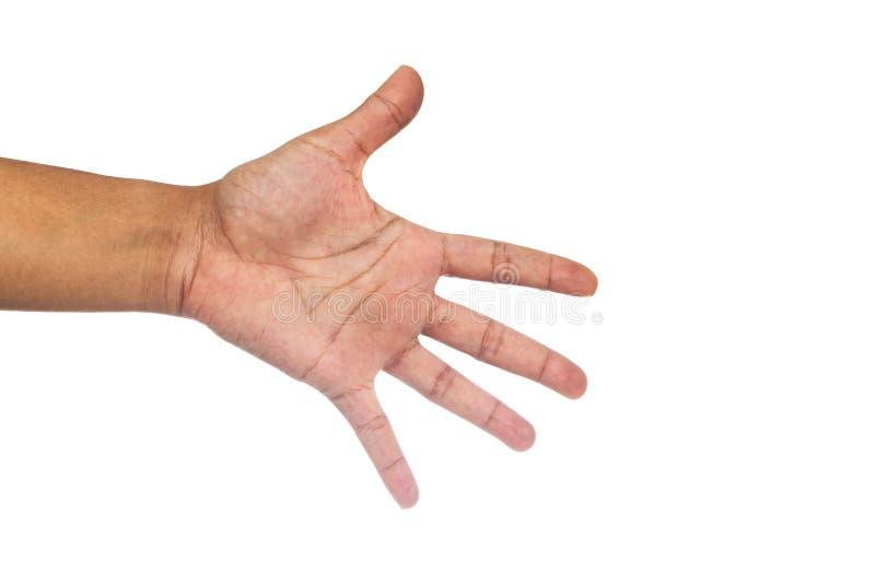 Χέρι γυναικών με το απομονωμένο υπόβαθρο στοκ φωτογραφίες