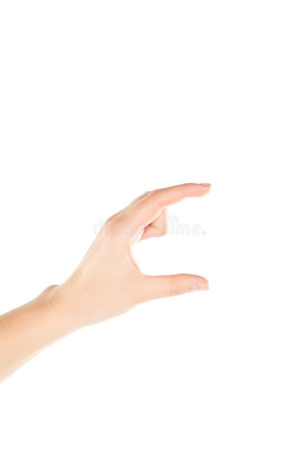 Χέρι γυναικών στο άσπρο υπόβαθρο στοκ εικόνα