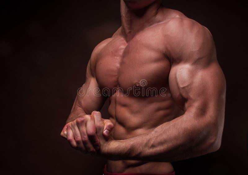 Χέρι με τους ισχυρούς δικέφαλους μυς στοκ εικόνα με δικαίωμα ελεύθερης χρήσης