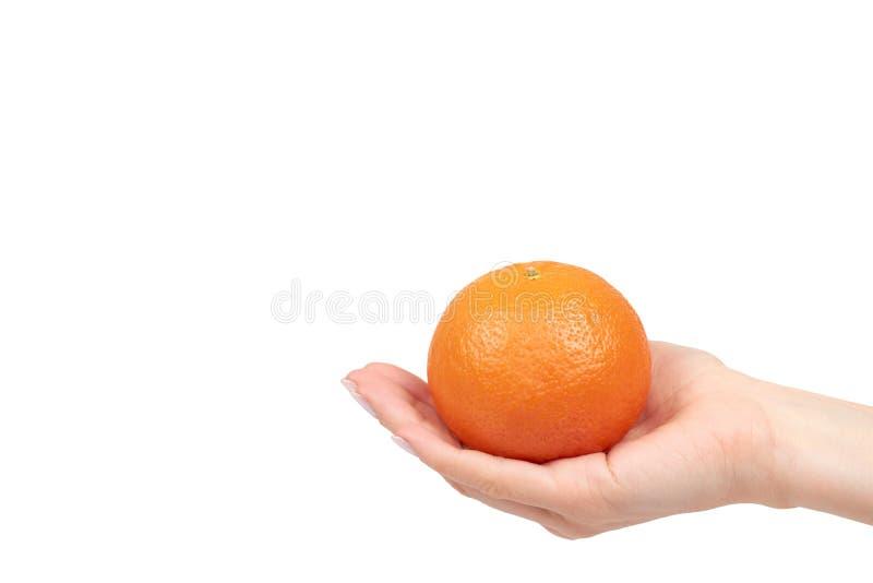 Χέρι με φρέσκο πορτοκαλί tangerine, ακατέργαστο εσπεριδοειδές στοκ εικόνες με δικαίωμα ελεύθερης χρήσης