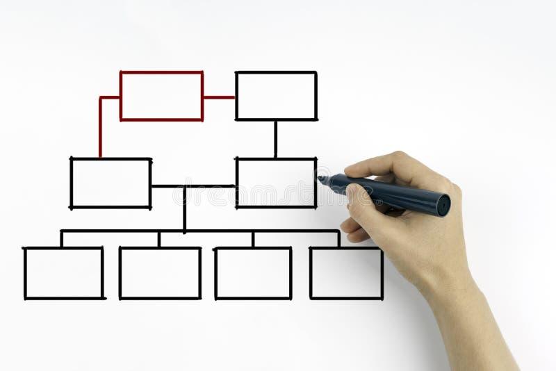 Χέρι που επισύρει την προσοχή ένα διάγραμμα οργάνωσης σε έναν λευκό πίνακα στοκ εικόνα με δικαίωμα ελεύθερης χρήσης