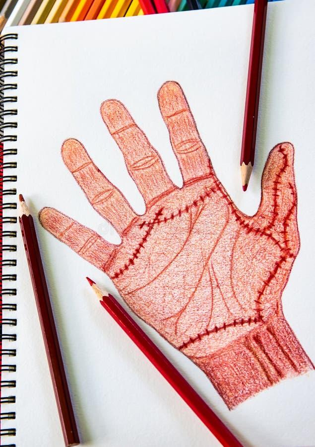 Χέρι που επισύρεται την προσοχή δεξί με τη συρραφή πληγών με τα ξύλινα μολύβια χρώματος στο υπόβαθρο της Λευκής Βίβλου, έννοια απ στοκ εικόνες