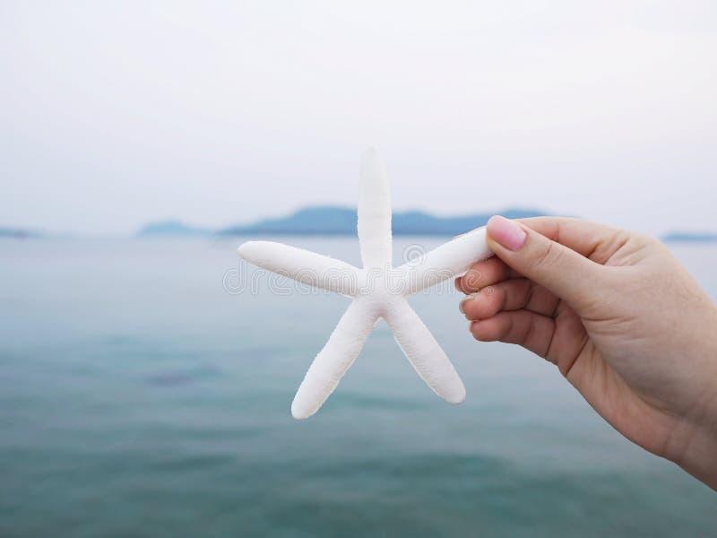 Χέρι που κρατά το μίμησης αστερία πέρα από την μπλε θάλασσα στοκ φωτογραφίες