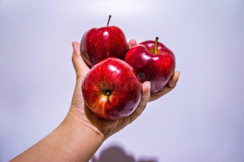 Χέρι που κρατά τρία φρέσκα κόκκινα μήλα στοκ εικόνες