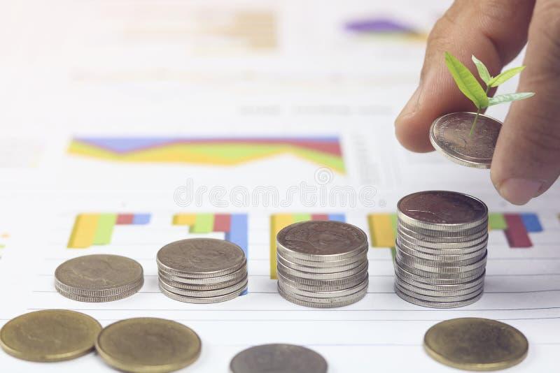 Χέρι που συσσωρεύεται των χρημάτων νομισμάτων με το μικρό δέντρο στο βιβλίο απολογισμού και της χρηματοδότησης τ για το υπόβαθρο  στοκ εικόνα