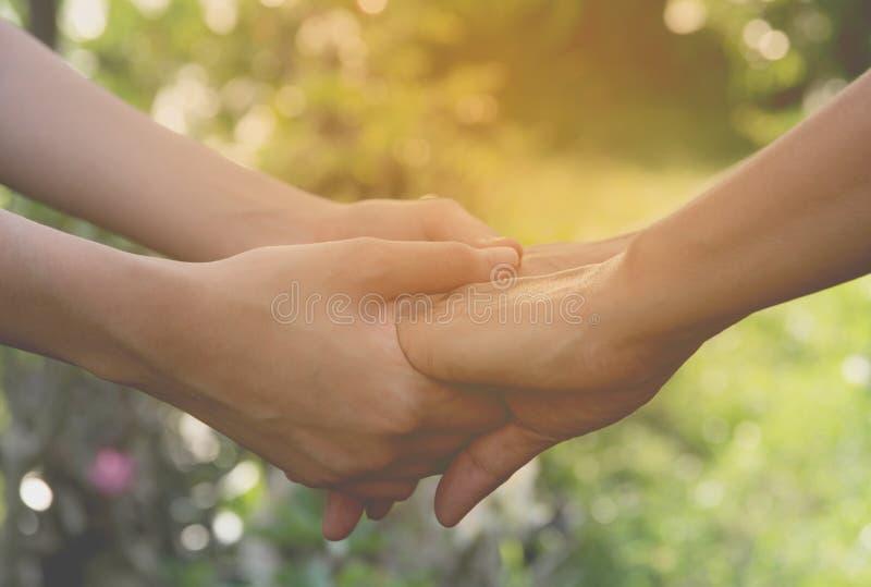 Χέρι της κυρίας και της νεώτερης κυρίας που διατηρούν τη συνοχή στη φύση στοκ εικόνες
