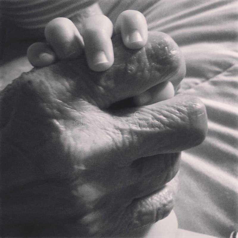 Χέρι του μεγάλου Grandma μωρού εκμετάλλευσης στοκ φωτογραφία