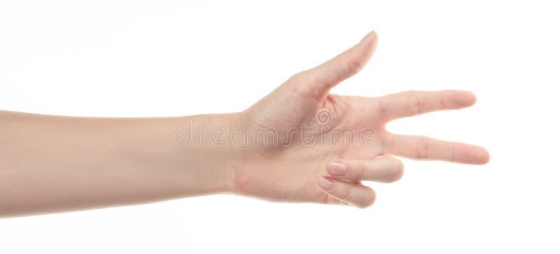 Χέρι του νέου κοριτσιού στο άσπρο υπόβαθρο στοκ εικόνες