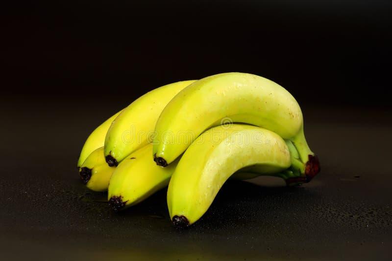 Χέρι των εύγευστων, πρόσφατα πλυμένων, εν μέρει ώριμων πράσινων κίτρινων μπανανών σε ένα μαύρο υπόβαθρο με τα waterdrops στοκ εικόνες