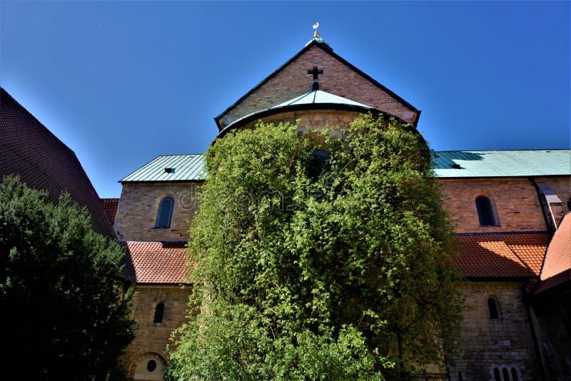 Χίλια χρονών αυξήθηκαν στην υπόθεση του καθεδρικού ναού Χίλντεσχαιμ της Mary στοκ φωτογραφία με δικαίωμα ελεύθερης χρήσης