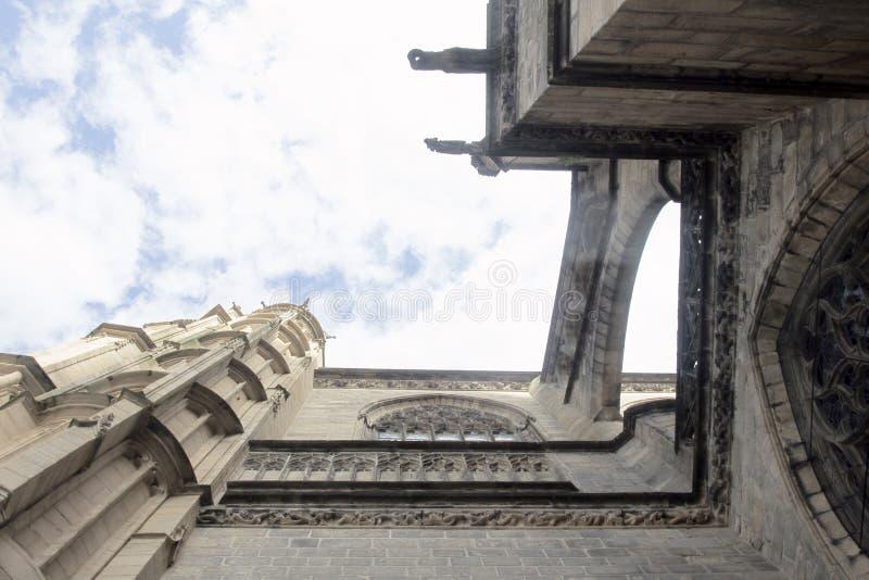 Χίμαιρες, tarask, gargoyles στους μεσαιωνικούς ναούς της Γαλλίας στοκ εικόνες με δικαίωμα ελεύθερης χρήσης