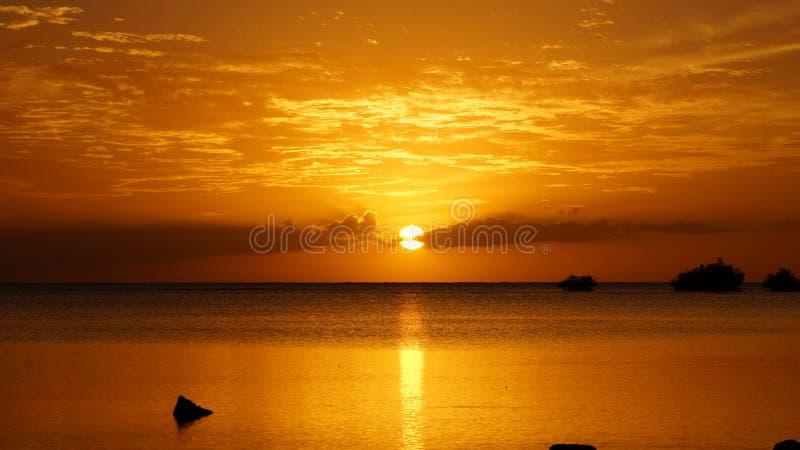 Χαβάη NEI στοκ εικόνες με δικαίωμα ελεύθερης χρήσης