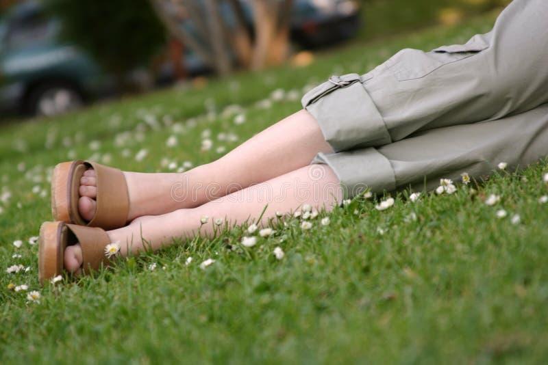 Download χαλάρωση πάρκων στοκ εικόνα. εικόνα από πυξαριού, φίλη - 114699