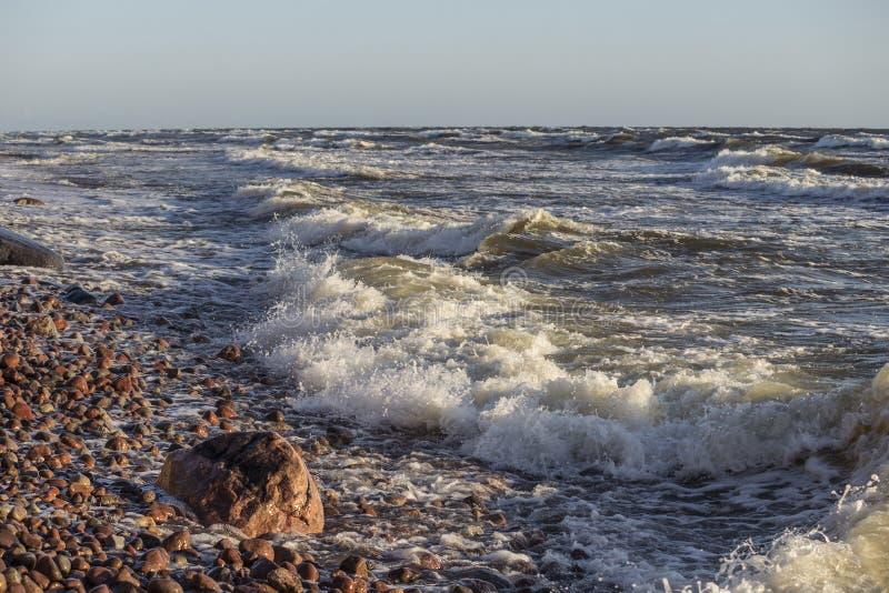 Χαλίκια κυματωγών θάλασσας στοκ εικόνα