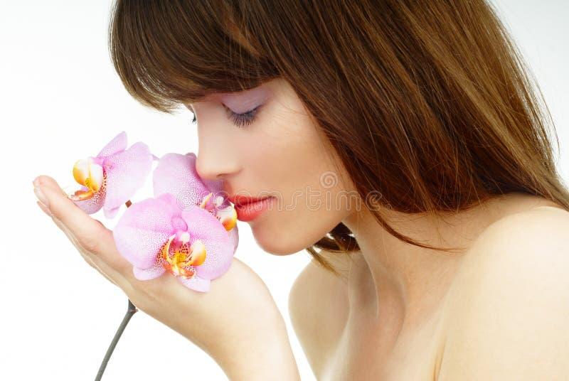 χαλαρωμένη orchid μυρίζοντας γ&up στοκ φωτογραφίες