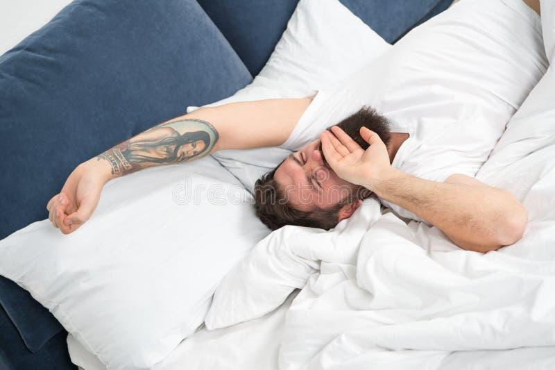 Χαλαρώστε και έννοια ύπνου Γενειοφόρος ύπνος τύπων ατόμων στα άσπρα φύλλα Υγιείς ύπνος και ευημερία Γενειοφόρο hipster ατόμων νυσ στοκ εικόνες με δικαίωμα ελεύθερης χρήσης
