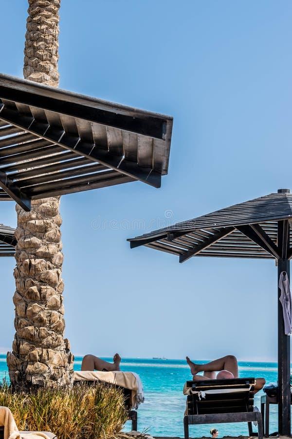 Χαλαρώστε στην παραλία της Ερυθράς Θάλασσας στοκ εικόνα