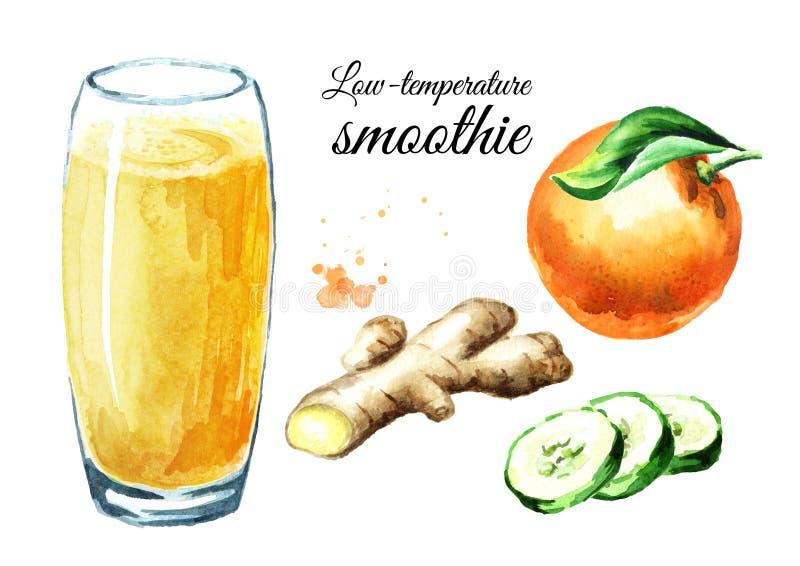 Χαμηλής θερμοκρασίας καταφερτζής με το σύνολο πορτοκαλιών, αγγουριών και πιπεροριζών Συρμένη χέρι απεικόνιση Watercolor, που απομ στοκ εικόνες