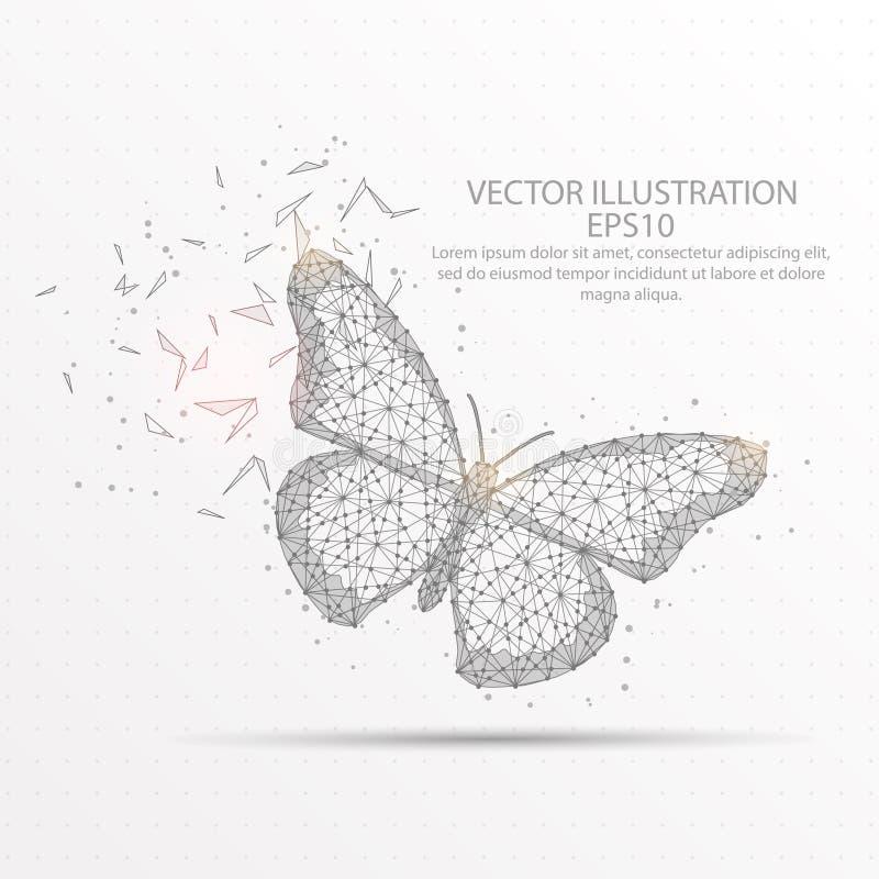 Χαμηλό πολυ πλαίσιο καλωδίων πεταλούδων στο άσπρο υπόβαθρο απεικόνιση αποθεμάτων