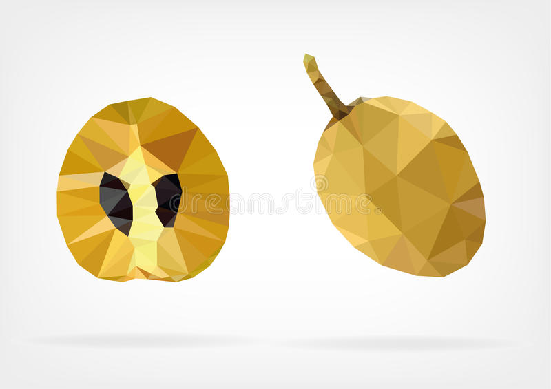 Χαμηλά πολυ Sapodilla φρούτα απεικόνιση αποθεμάτων