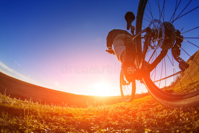 Χαμηλή άποψη γωνίας του ποδηλάτη που στέκεται με το ποδήλατο βουνών στο ίχνος στο ηλιοβασίλεμα στοκ εικόνα με δικαίωμα ελεύθερης χρήσης