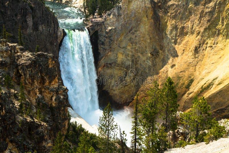Χαμηλότερες πτώσεις του ποταμού Yellowstone στοκ εικόνες