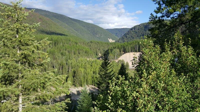Χαμηλότερο πάρκο παγετώνων στοκ φωτογραφίες