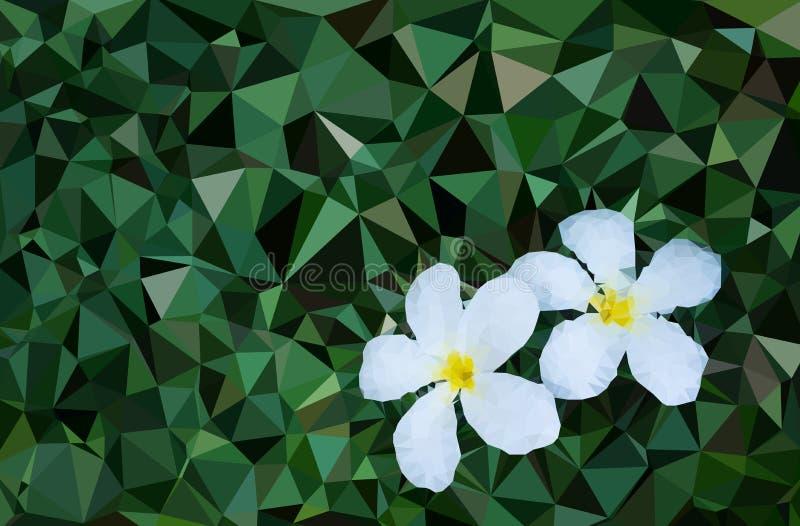Χαμηλό πολυ λουλούδι στοκ φωτογραφία με δικαίωμα ελεύθερης χρήσης