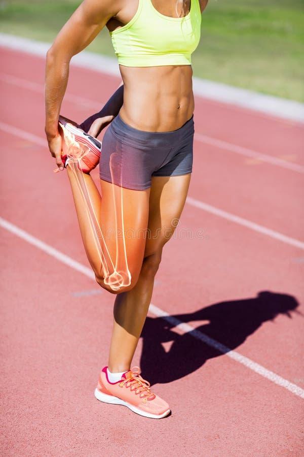 Χαμηλό τμήμα του θηλυκού ποδιού τεντώματος αθλητών στη διαδρομή στοκ εικόνα