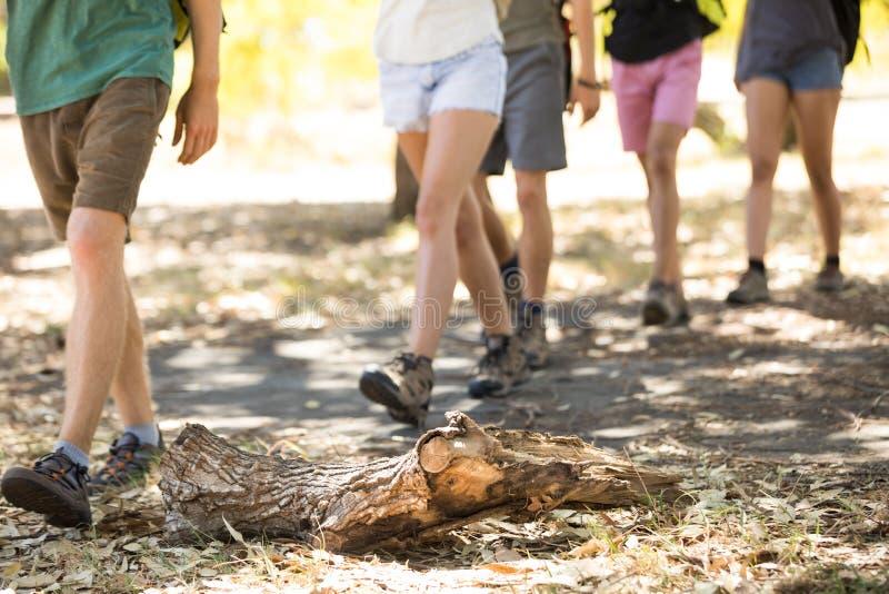 Χαμηλό τμήμα των φίλων που περπατούν στον τομέα στοκ φωτογραφία με δικαίωμα ελεύθερης χρήσης