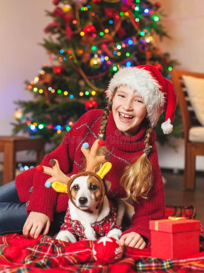 Χαμογελώντας κορίτσι με το σκυλί κοντά στο χριστουγεννιάτικο δέντρο στο σπίτι στοκ εικόνες