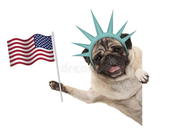 Χαμογελώντας το σκυλί κουταβιών μαλαγμένου πηλού που κρατά ψηλά τη αμερικανική σημαία, λοξά από το άσπρο έμβλημα, που φορά τη γυν στοκ φωτογραφία με δικαίωμα ελεύθερης χρήσης