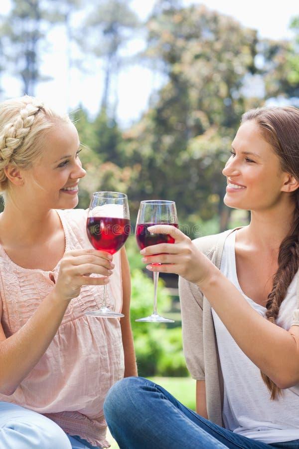 Χαμογελώντας φίλοι που τα γυαλιά κρασιού τους στοκ φωτογραφία με δικαίωμα ελεύθερης χρήσης