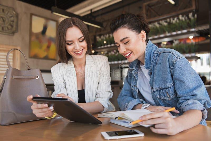 Χαμογελώντας θηλυκός σύμβουλος που βοηθά τον πελάτη της στοκ εικόνες με δικαίωμα ελεύθερης χρήσης