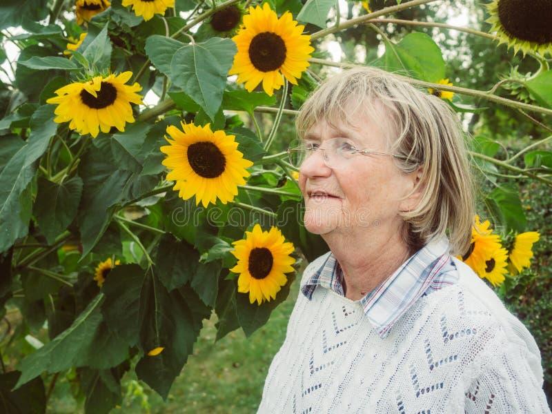 Χαμογελώντας συνταξιούχος στον κήπο της με τον ηλίανθο στοκ φωτογραφία με δικαίωμα ελεύθερης χρήσης