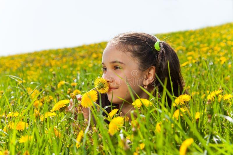 Χαμόγελο της μυρίζοντας πικραλίδας κοριτσιών στο λιβάδι στοκ εικόνες