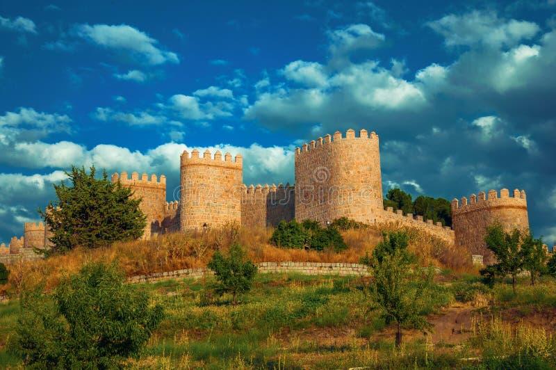 Χαμόκλαδο μπροστά από τους πύργους πετρών στους τοίχους Avila στοκ φωτογραφίες με δικαίωμα ελεύθερης χρήσης