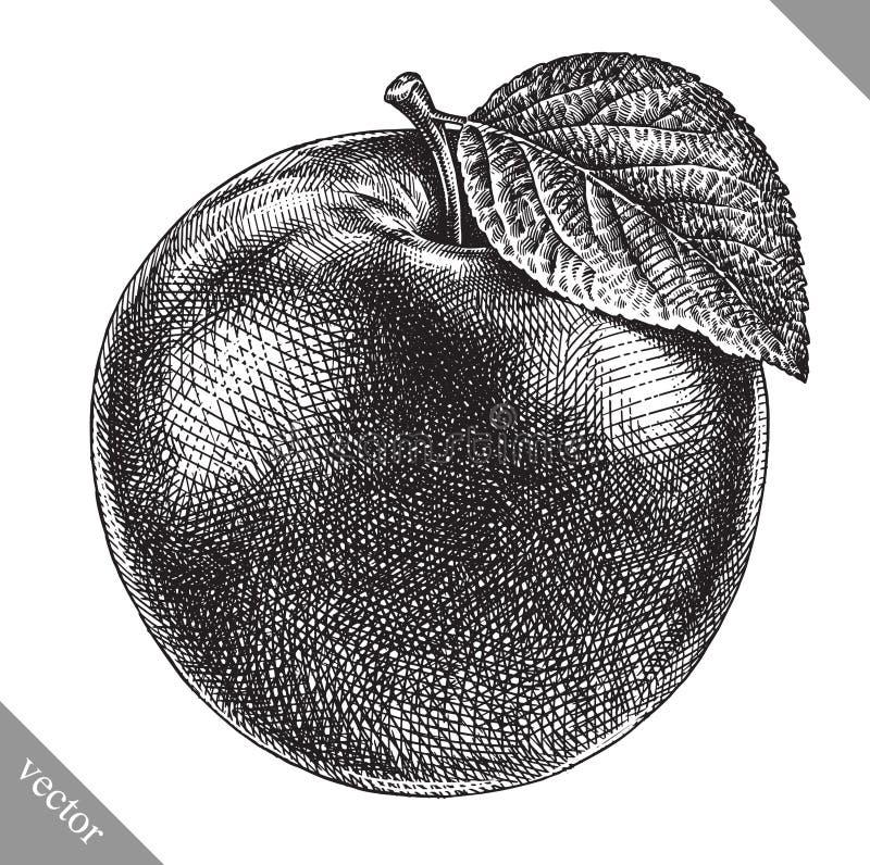 Χαράξτε την απομονωμένη συρμένη γραφική χέρι διανυσματική απεικόνιση μήλων ελεύθερη απεικόνιση δικαιώματος