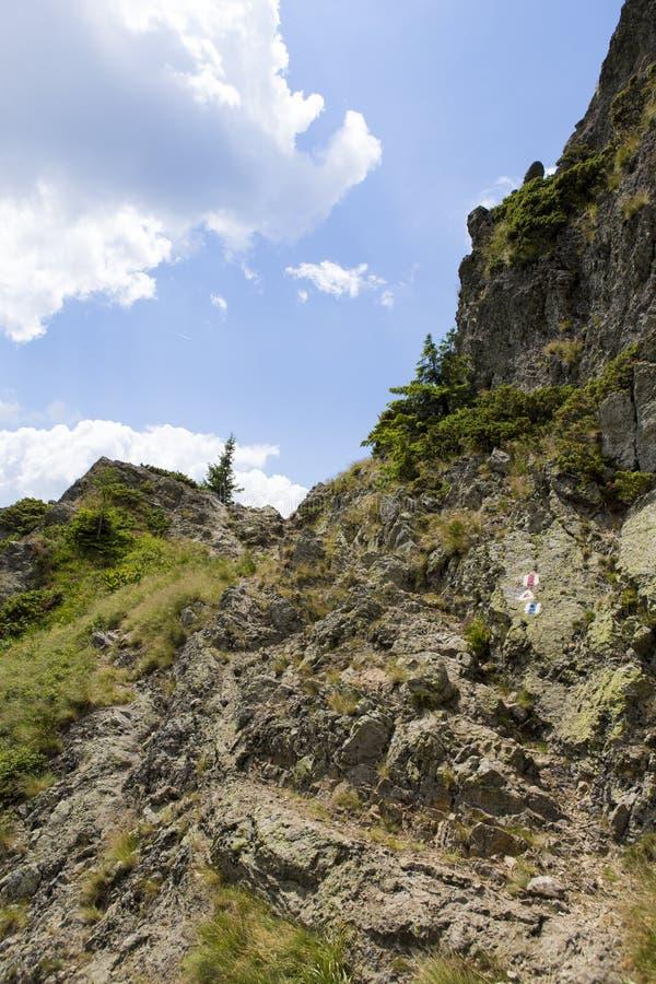 Χαρακτηρισμός βουνών τουριστών που οδηγεί σε Cozia cabana στοκ εικόνα