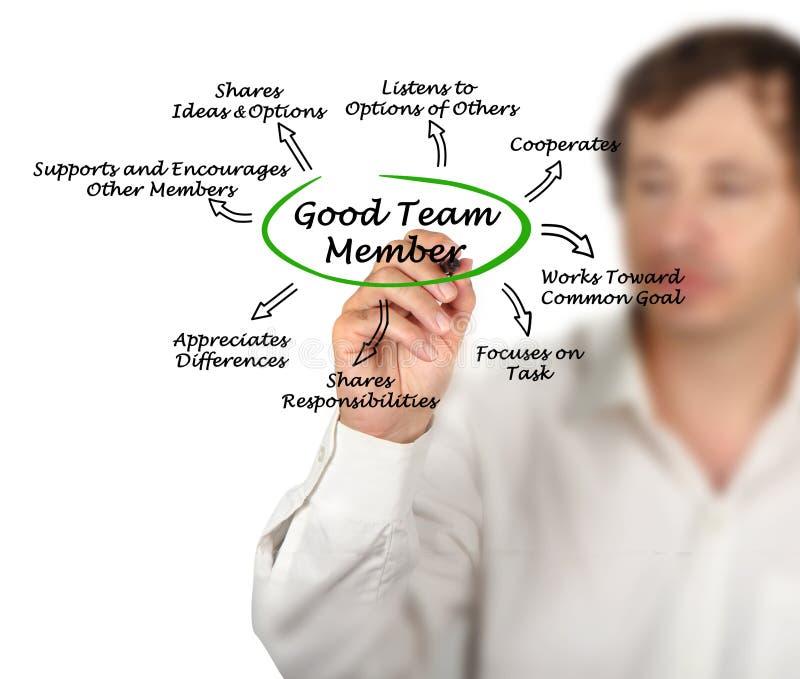 Χαρακτηριστικά του καλού μέλους ομάδας στοκ εικόνα
