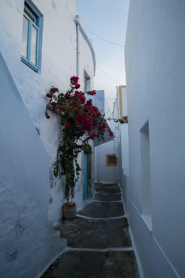 Χαρακτηριστικές ασπρισμένες σπίτια και αλέα στη Πλάκα, Μήλος, Ελλάδα στοκ φωτογραφία με δικαίωμα ελεύθερης χρήσης